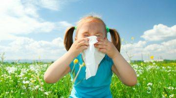 motivos de la alergia