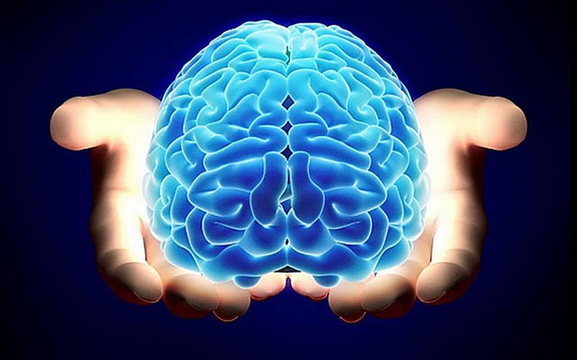 fortalece tu sistema nervioso