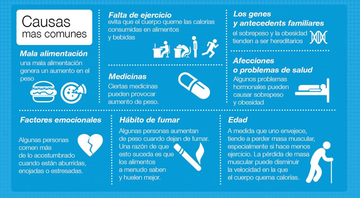 la obesidad y sus causas