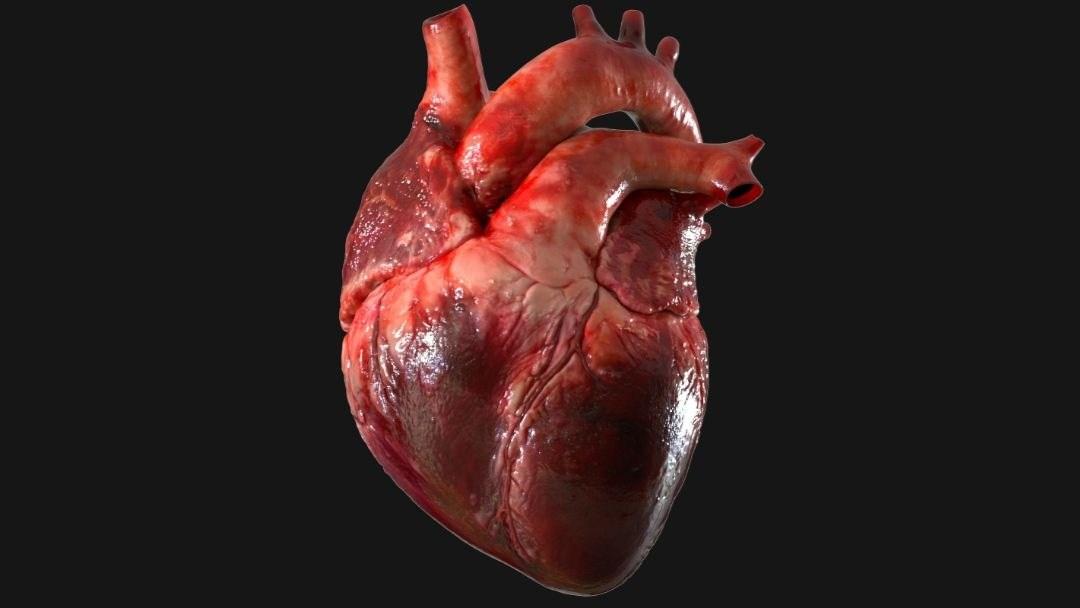 coronavirus y el corazón